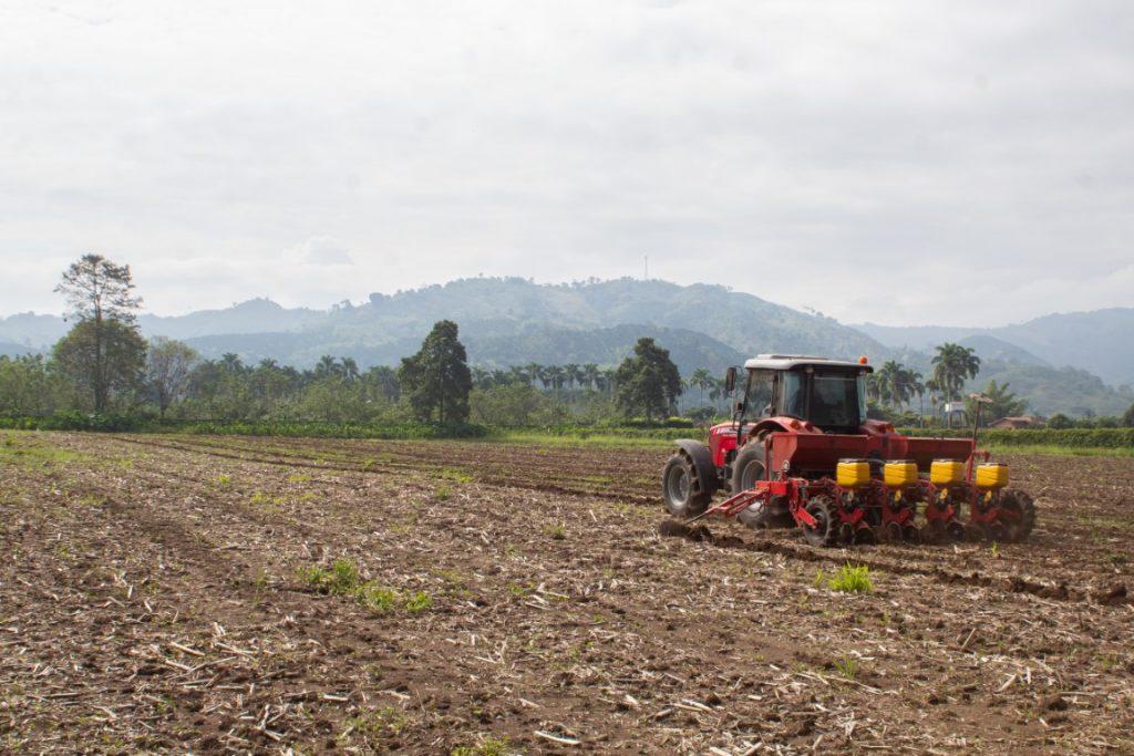 Tractor e terreno de siembra de maíz