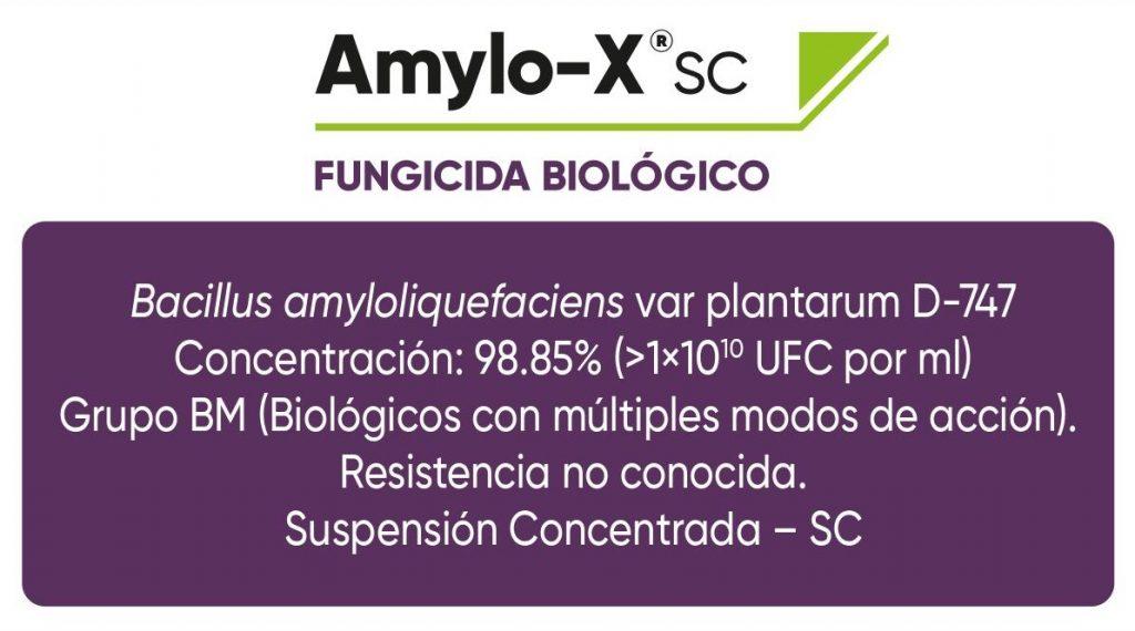 Resumen técnico de Amylo-X, fungicia biológico