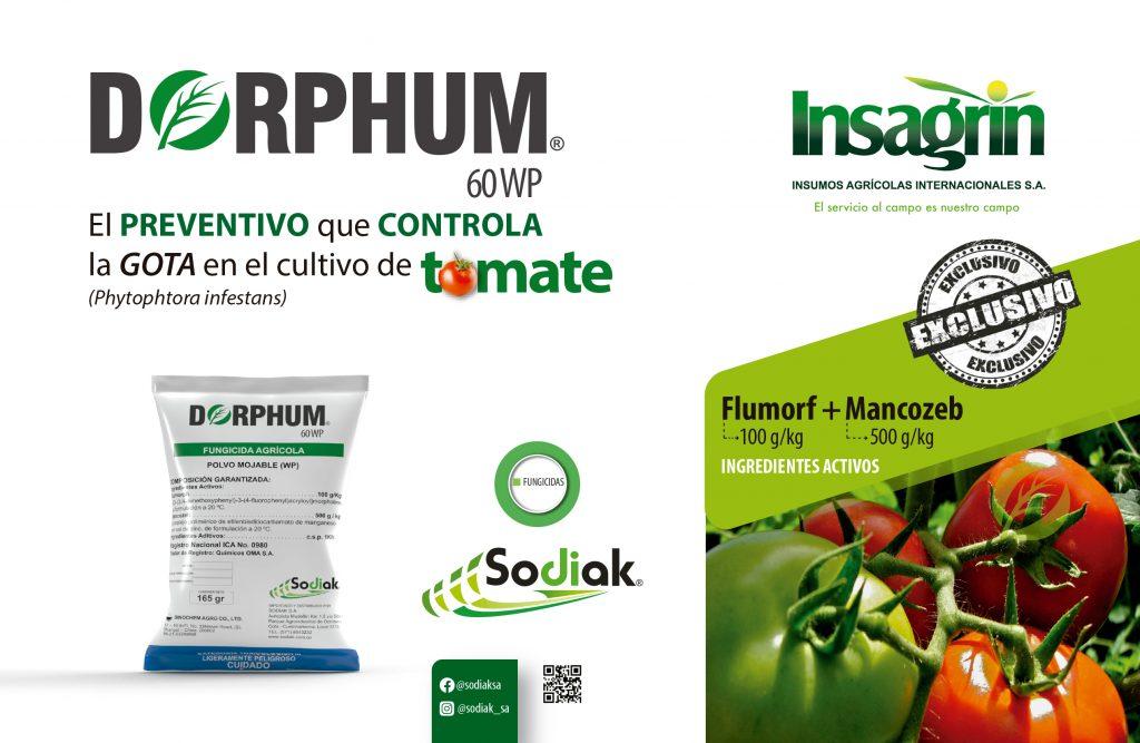 Dorphum, fungicida para el tomate